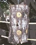 Free Woodworking Plans: Free Bird Feeder Plans