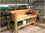 From Bed to Potting Bench